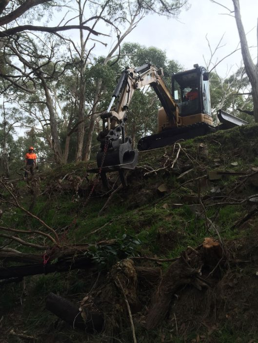 Fallen tree removal and stumping Mt Macedon and Sunbury by PM Tree Lopping and Stump Removal
