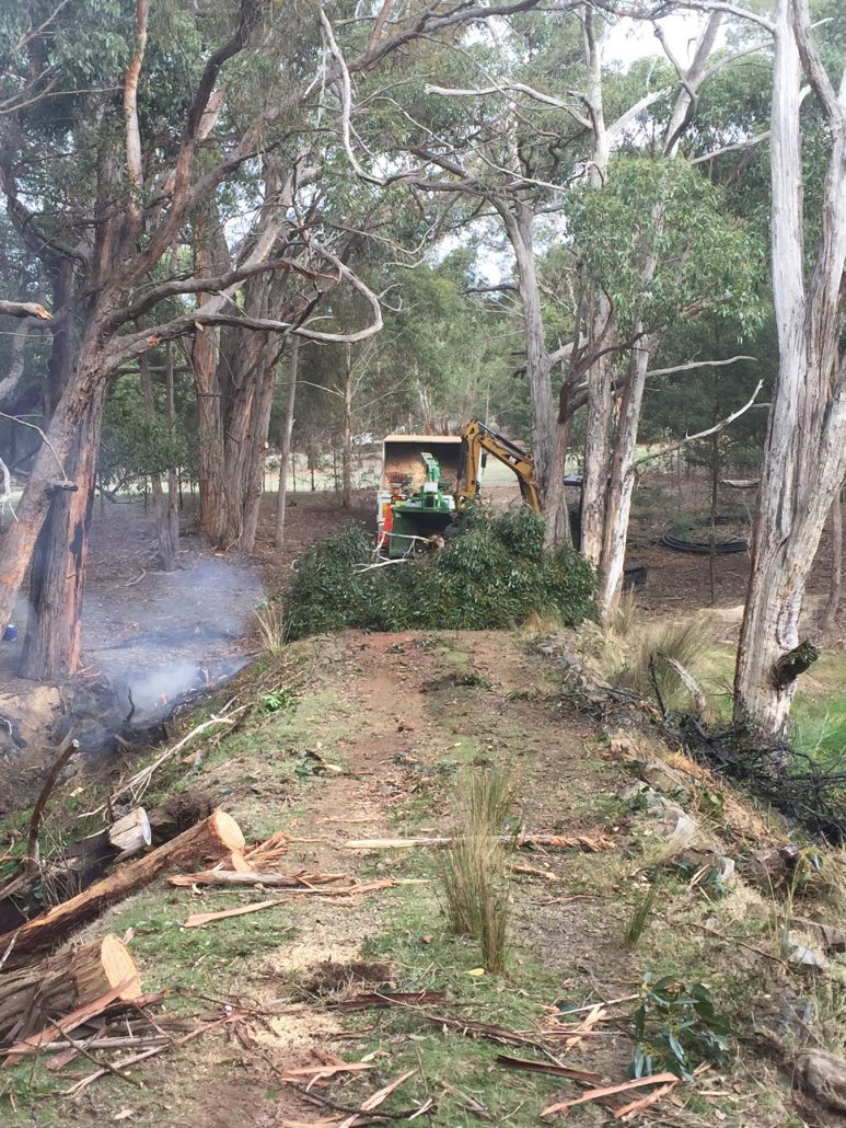 Tree clearing and tree removal Macedon Ranges and Sunbury region